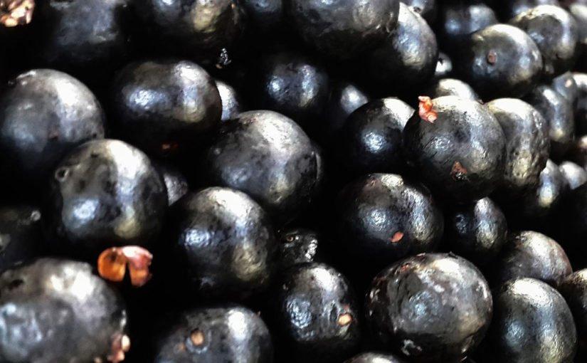Acai Beere – Abnehmen und  Anti-Aging
