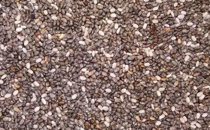 Chia Samen – gesundheitliche Wirkung