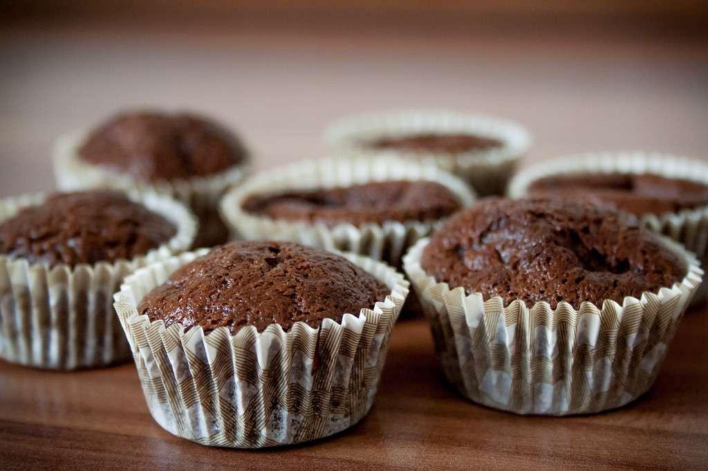 Vegane Schoko-Nuss-Muffins mit Chia-Samen